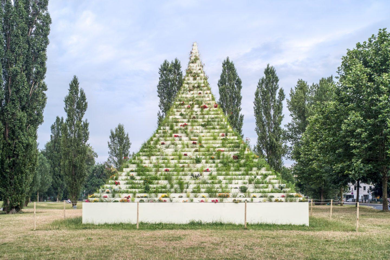 Pionír gyomnövények – Mit tanít a documenta14 a természetről?