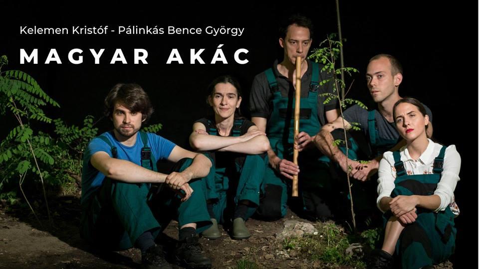 Magyar akác