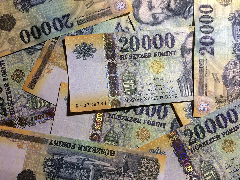 Nem minden arany, ami fénylik.  A Magyar Nemzeti Bank kortárs műtárgyvásárlásai és hatásuk a magyar művészeti színtérre